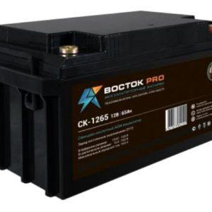 Восток СК 1265        :Аккумулятор герметичный свинцово-кислотный