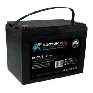 Восток СК 1275        :Аккумулятор герметичный свинцово-кислотный