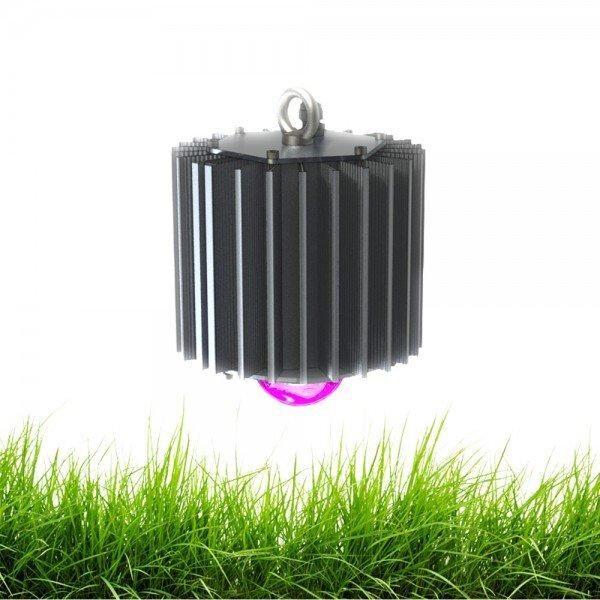 Светодиодный светильник ПромЛед Профи-50-ФИТО (45°)